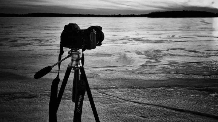 【コラム】ニコンZ6発売から1年半使っててお気に入りのカメラ